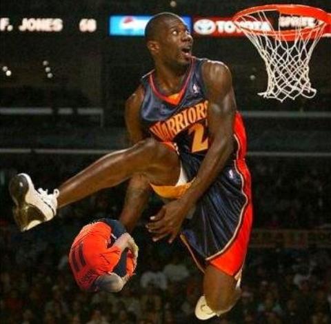 Robben als Basketbal