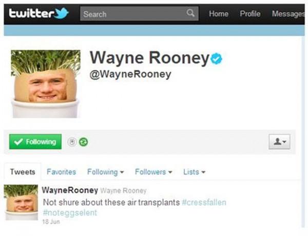 Twitter Rooney
